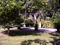 DSCF0607